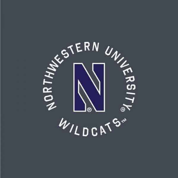 Northwestern University Wildcats Ladies Under Armour Grey Short with Purple Accent and Side Pockets -2