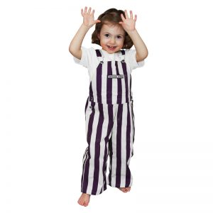 Northwestern University Wildcats Color Toddler Game Bib Overalls