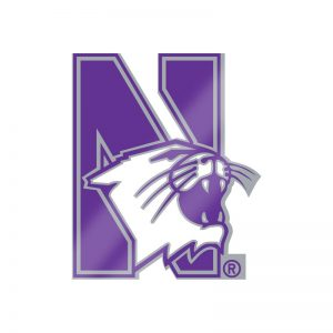 Northwestern Wildcats Silver Tone Brass Lapel Pin with N-cat Design