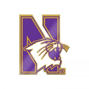 Northwestern Wildcats Gold Tone Brass Lapel Pin with N-cat Design
